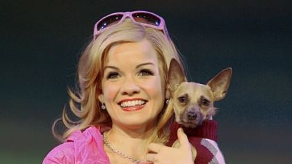 "Becky Gulsvig is Elle Woods and Frankie is Bruiser in ""Legally Blonde the Musical"" at the Benedum."