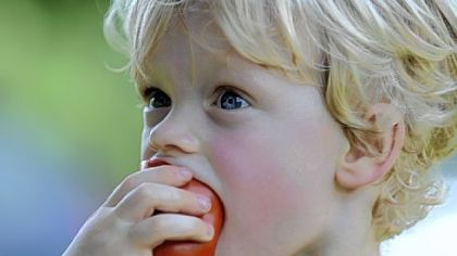 Elliot Morris, 2, munches on a tomato at  Churchview Farm run by Tara Rockacy and her husband Todd Pander in Baldwin.