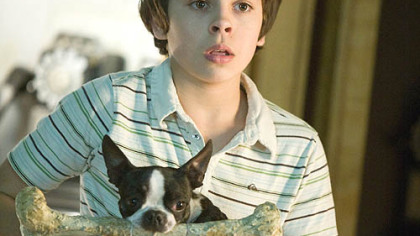 "A ""Hotel for Dogs"" allows foster child Bruce (Jake T. Austin) to reunite with his beloved dog named Friday."