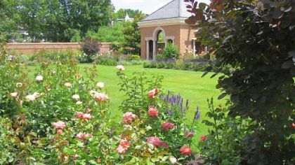 One of the brick pavilions of the rose garden at the back of the property of the Pennsylvania governor's residence. Many of the roses are low-maintenance varieties such as the Knockout series.