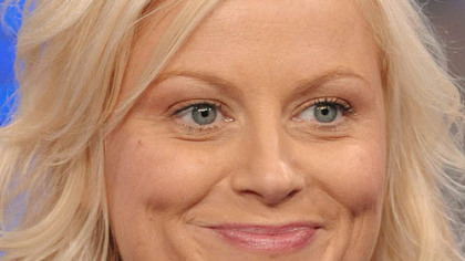 "Amy Poehler's new show will be filmed in the same mockumentary style as ""The Office."""