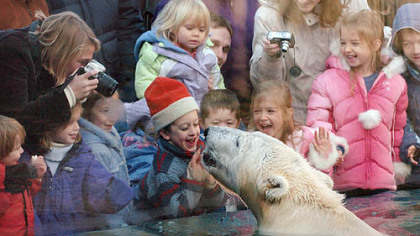 Children react as a polar bear approaches the window in the polar bear exhibit at the Pittsburgh Zoo & PPG Aquarium in 2006. The exhibit is one of the reasons the zoo was named fourth best in the country for kids by Parents magazine.