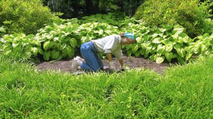 Seward Johnson sculpture of a gardener.