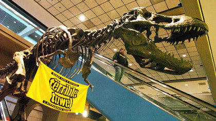 A Steelers terrible towel hangs on a T-Rex model at the Pittsburgh International Airport in January 2006.
