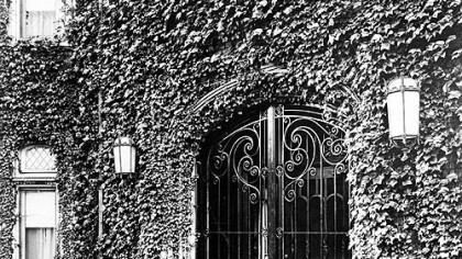 In 1949, ivy framed the wrought iron gates at the main entrance of the red brick mansion owned by David McCahill, who donated it that year to the Roman Catholic Diocese of Pittsburgh for use as a bishop's residence.